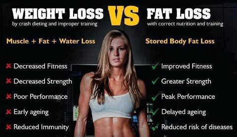 muscle-vs-fat-1